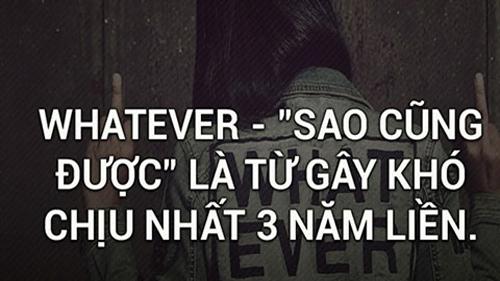 whatever-sao-cung-duoc