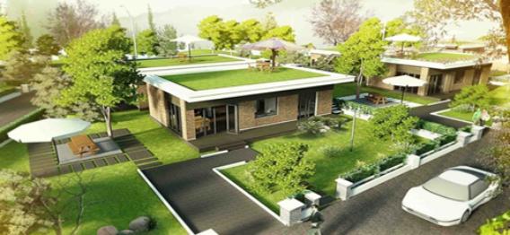 Những loại cây nên và không nên trồng trước nhà để hợp phong thủy