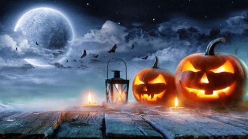 halloween là gì? tin tức news