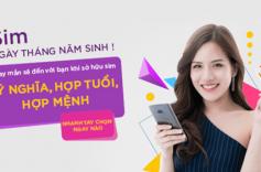 Sim số đẹp là gì? Sim đầu số nào cổ nhất Việt Nam?