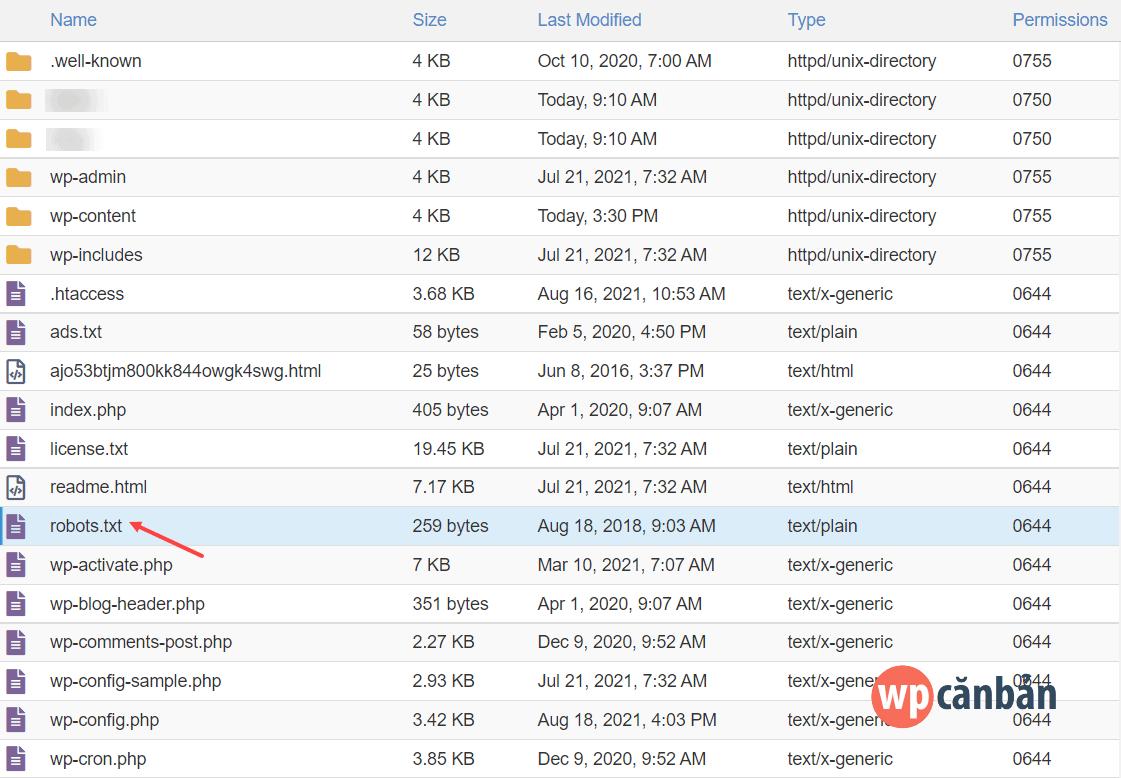 upload file robots txt lên host